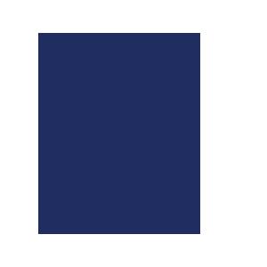 ESA-BIC